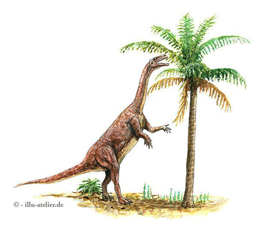 Dinosaurier Illustration Plateosaurus